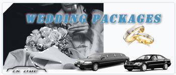 Boston Wedding Limos